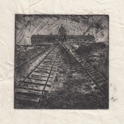 Auschwitz Birkenau -ABVII
