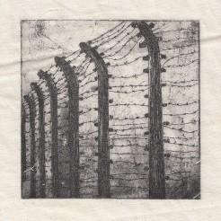 Auschwitz Birkenau - ABII