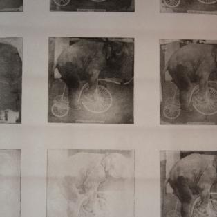 Philosophy of an Elephant - E60,000 - Detail