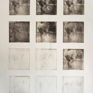 Philosophy of an Elephant - E60,000 - Printmaking