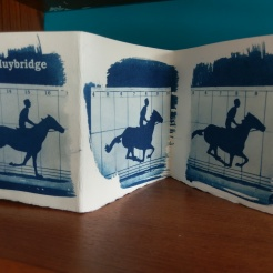 Concertina Book - Muybridge Kingston Museum