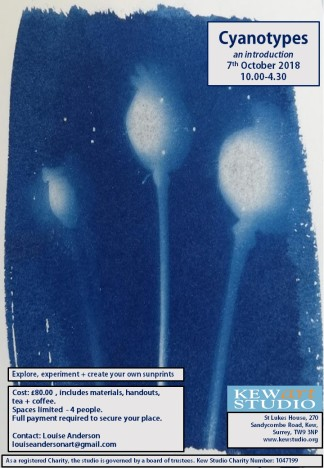 Cyanotype Poster October 2018 V1.pptx