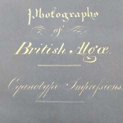 Anna Atkins Kew Gardens Archives