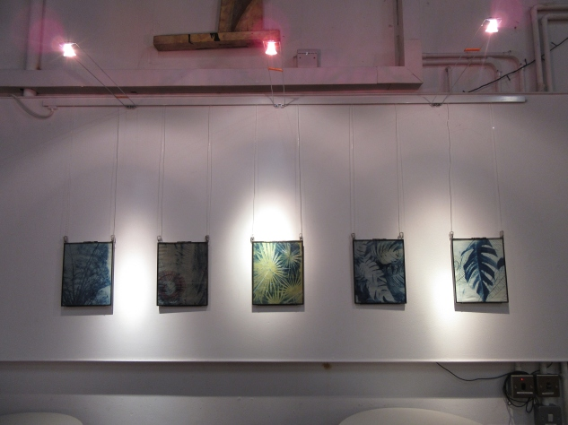 CornerHOUSE Gallery - Cyanotype prints solo show (2020)