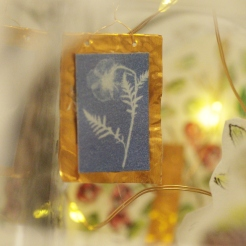 Close up of Cyanotype as tribute to Anna Atkins -Dispalyed in glasshouse in Orleans House Gallery - Beyond The Frame