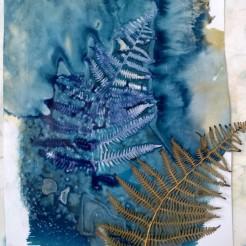 Sunprinting using salts - Landmark Arts Centre, Summer School 2020