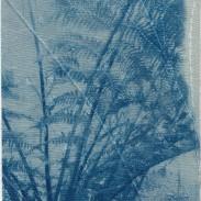 Fern Leaves I – Kew Gardens (2020)