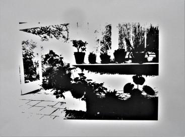 Barbara Hepworth's Conservatory