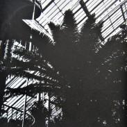 Temperate House – Kew (2020)
