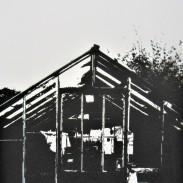 Abandoned Glasshouse – Cookham (2020)